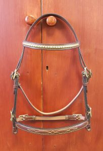 Stallioninhandbridle.jpg